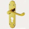 Aglio Victorian Summer Door Handle - Euro Lock Set - Brass Pvd