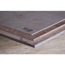 Plywood Hardwood Throughout 2440mm X 1220mm